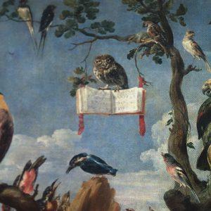 Detail uil uit vogelconcert