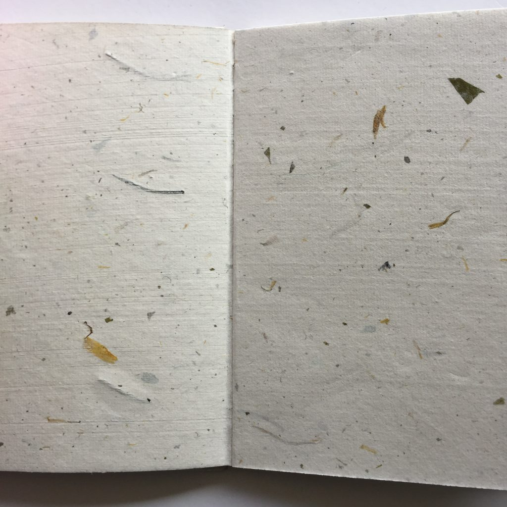 Natuur pagina's
