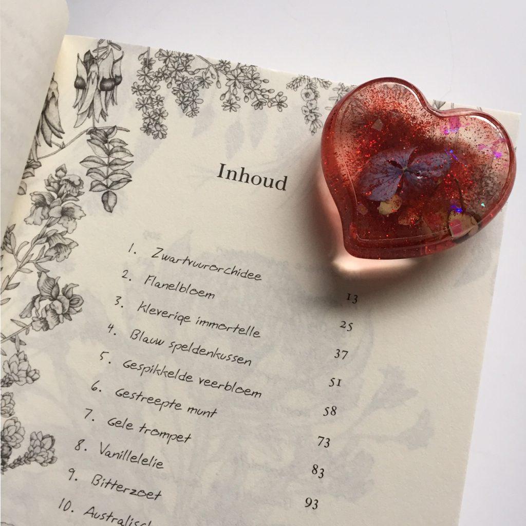 Valentijnsswap 2020 - Boek en gift